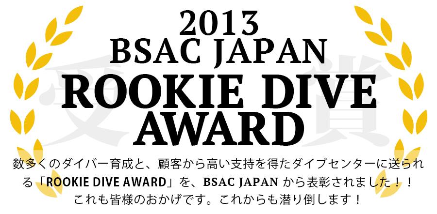 2013年度ルーキーアワード賞 受賞